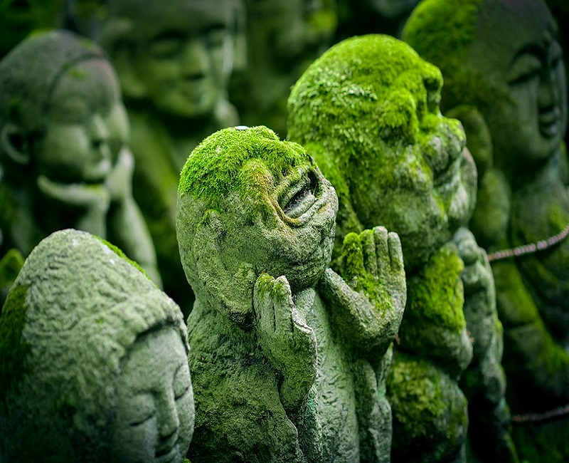 moss covered smiling buddha statues