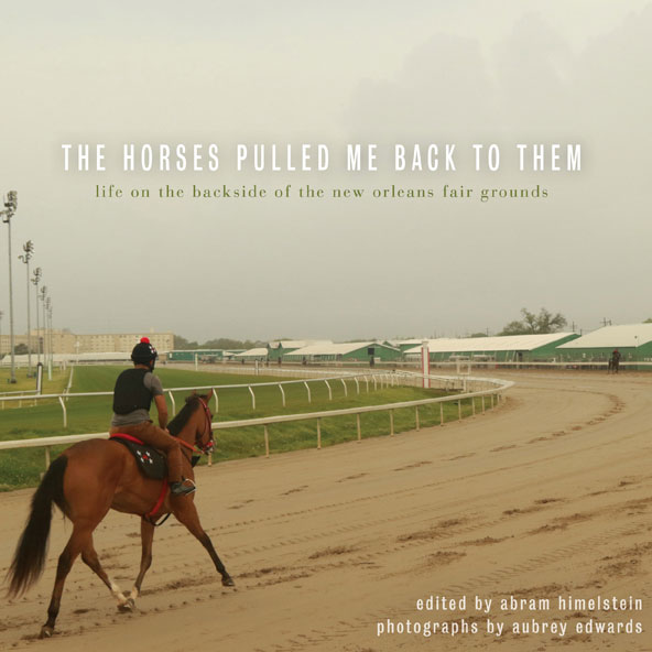book cover for The Horses Pulled Me Back To Them