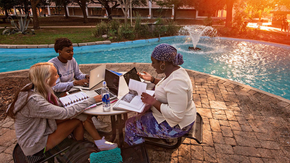 COBA students study at the pond