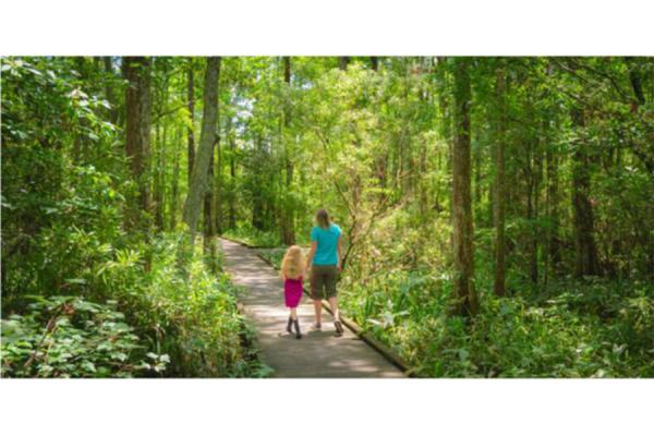 The UNO Transportation Institute has created a statewide plan to guide the Louisiana Recreational Trail Program.