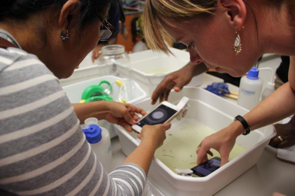 The University of New Orleans Prepares Local Educators to Cultivate 'Citizen Scientists'